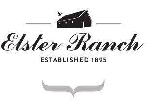 elster-new-logo