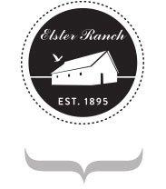 elster-stamp-logo