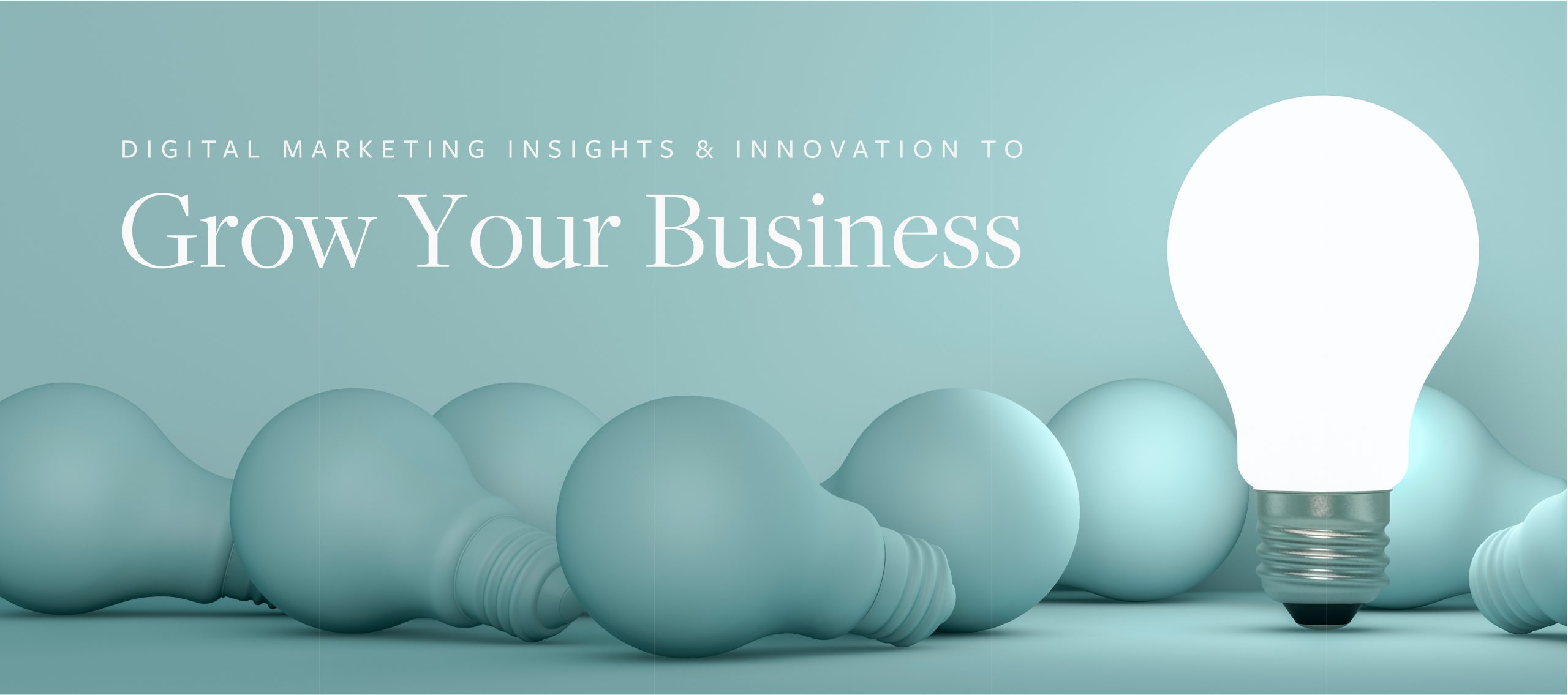 Digital Marketing Insights & Innovation to Grow Your Business